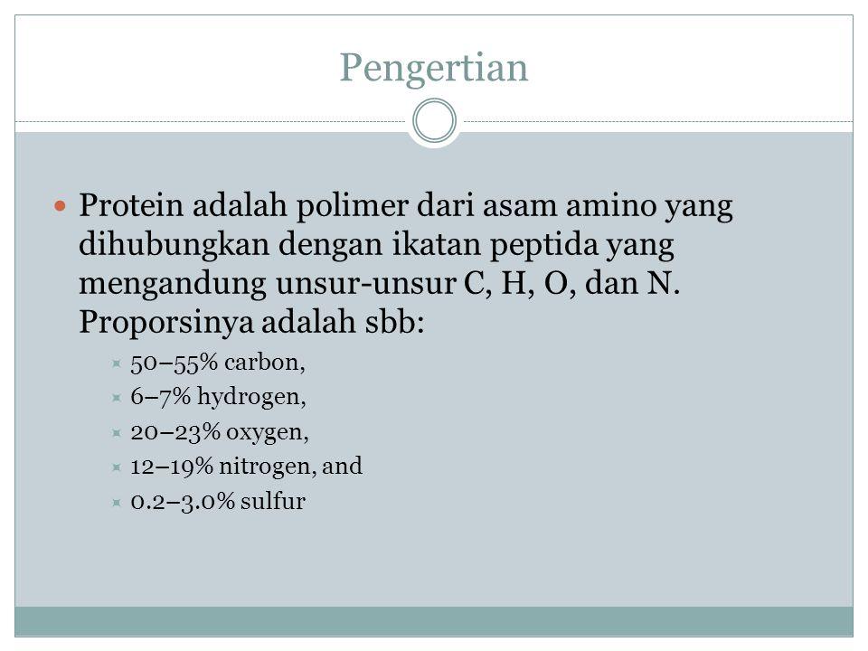 Pengertian Protein adalah polimer dari asam amino yang dihubungkan dengan ikatan peptida yang mengandung unsur-unsur C, H, O, dan N. Proporsinya adala