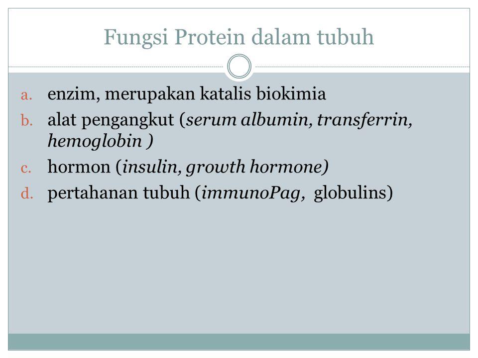 Fungsi Protein dalam tubuh a. enzim, merupakan katalis biokimia b. alat pengangkut (serum albumin, transferrin, hemoglobin ) c. hormon (insulin, growt