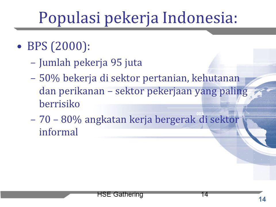 14 HSE Gathering14 Populasi pekerja Indonesia: BPS (2000): –Jumlah pekerja 95 juta –50% bekerja di sektor pertanian, kehutanan dan perikanan – sektor