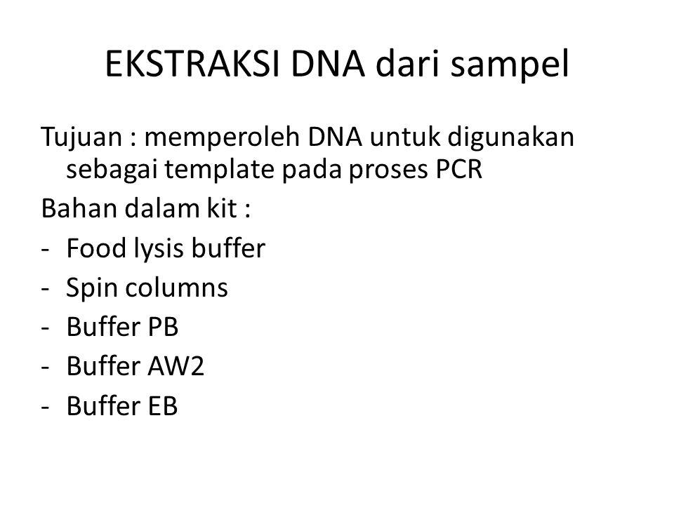 EKSTRAKSI DNA dari sampel Tujuan : memperoleh DNA untuk digunakan sebagai template pada proses PCR Bahan dalam kit : -Food lysis buffer -Spin columns