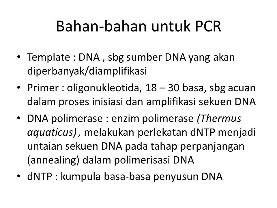 Bahan-bahan untuk PCR Template : DNA, sbg sumber DNA yang akan diperbanyak/diamplifikasi Primer : oligonukleotida, 18 – 30 basa, sbg acuan dalam prose