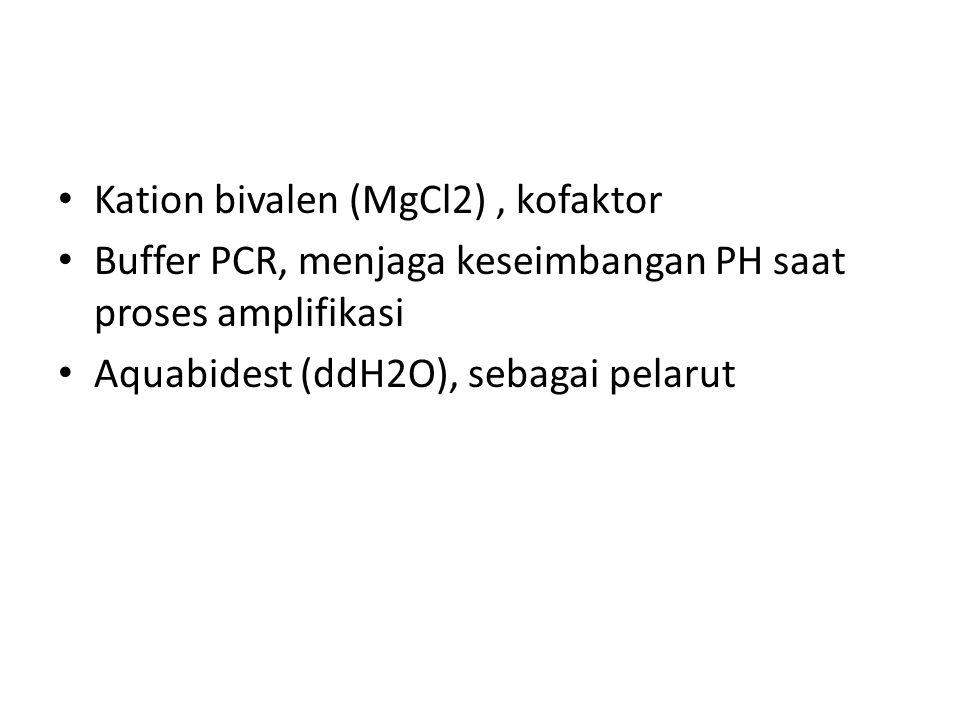 Kation bivalen (MgCl2), kofaktor Buffer PCR, menjaga keseimbangan PH saat proses amplifikasi Aquabidest (ddH2O), sebagai pelarut