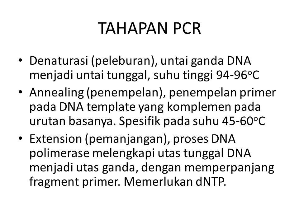 TAHAPAN PCR Denaturasi (peleburan), untai ganda DNA menjadi untai tunggal, suhu tinggi 94-96 o C Annealing (penempelan), penempelan primer pada DNA te