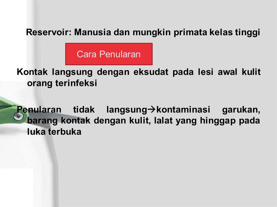 Reservoir: Manusia dan mungkin primata kelas tinggi Kontak langsung dengan eksudat pada lesi awal kulit orang terinfeksi Penularan tidak langsung  kontaminasi garukan, barang kontak dengan kulit, lalat yang hinggap pada luka terbuka Cara Penularan