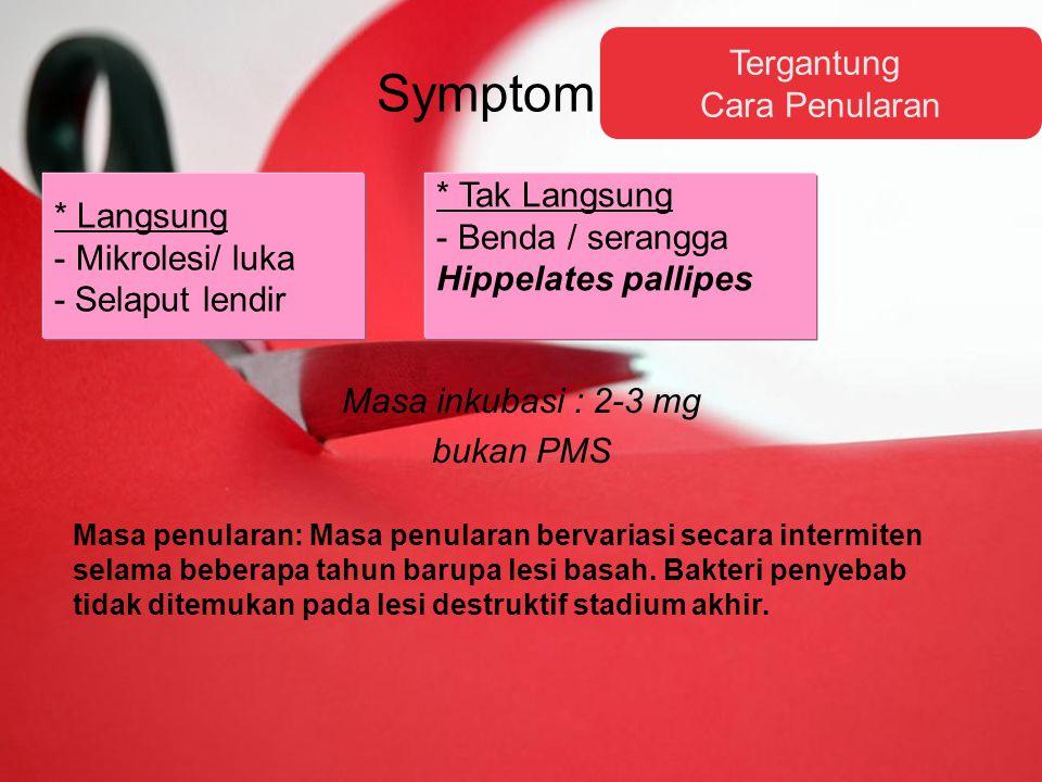 Symptom Masa inkubasi : 2-3 mg bukan PMS Tergantung Cara Penularan * Langsung - Mikrolesi/ luka - Selaput lendir * Tak Langsung - Benda / serangga Hippelates pallipes Masa penularan: Masa penularan bervariasi secara intermiten selama beberapa tahun barupa lesi basah.