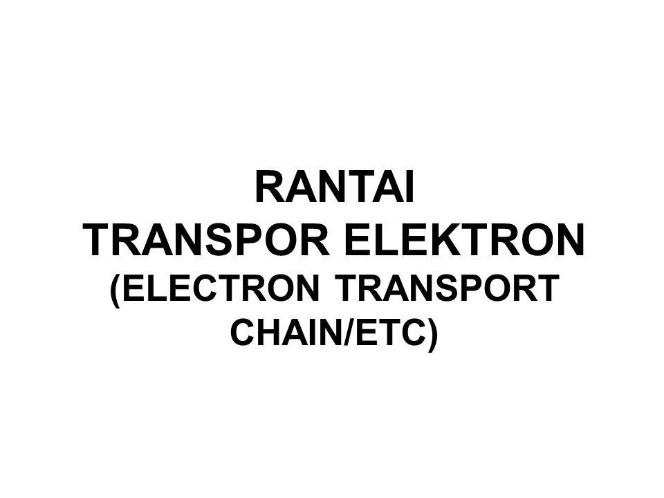 RANTAI TRANSPOR ELEKTRON (ELECTRON TRANSPORT CHAIN/ETC)