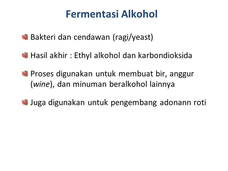 Fermentasi Alkohol Bakteri dan cendawan (ragi/yeast) Hasil akhir : Ethyl alkohol dan karbondioksida Proses digunakan untuk membuat bir, anggur (wine),