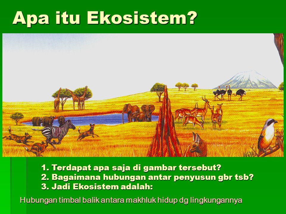 Apa itu Ekosistem.1. Terdapat apa saja di gambar tersebut.