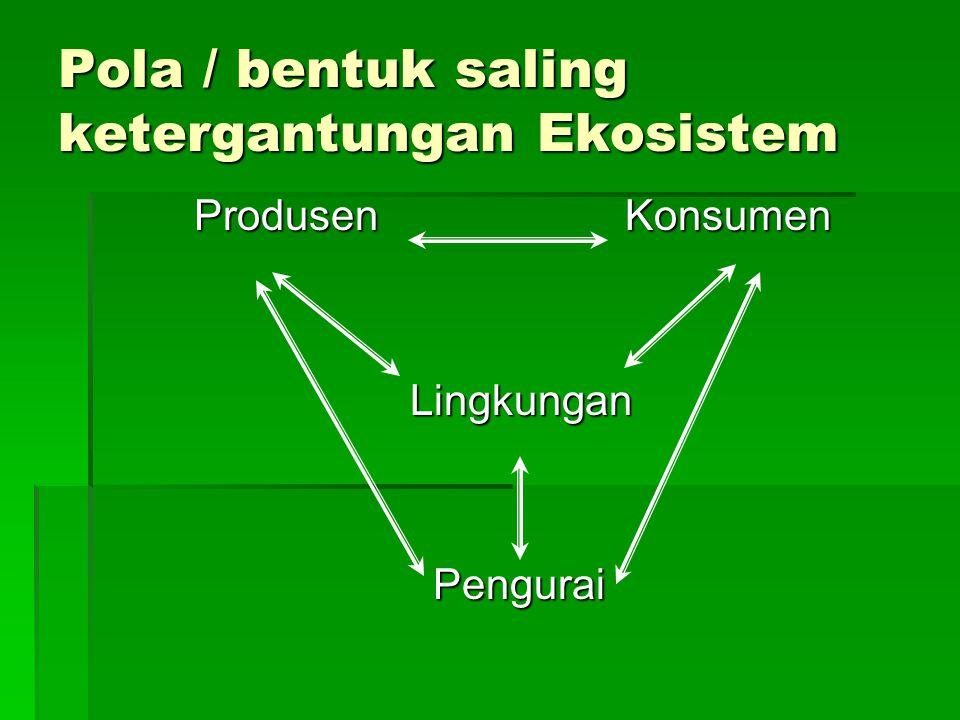 Pola / bentuk saling ketergantungan Ekosistem Produsen Konsumen Lingkungan Lingkungan Pengurai Pengurai