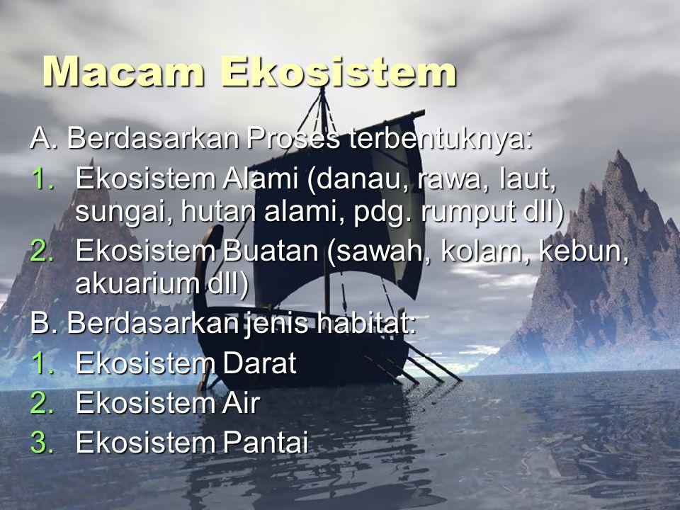 Macam Ekosistem A. Berdasarkan Proses terbentuknya: 1.Ekosistem Alami (danau, rawa, laut, sungai, hutan alami, pdg. rumput dll) 2.Ekosistem Buatan (sa