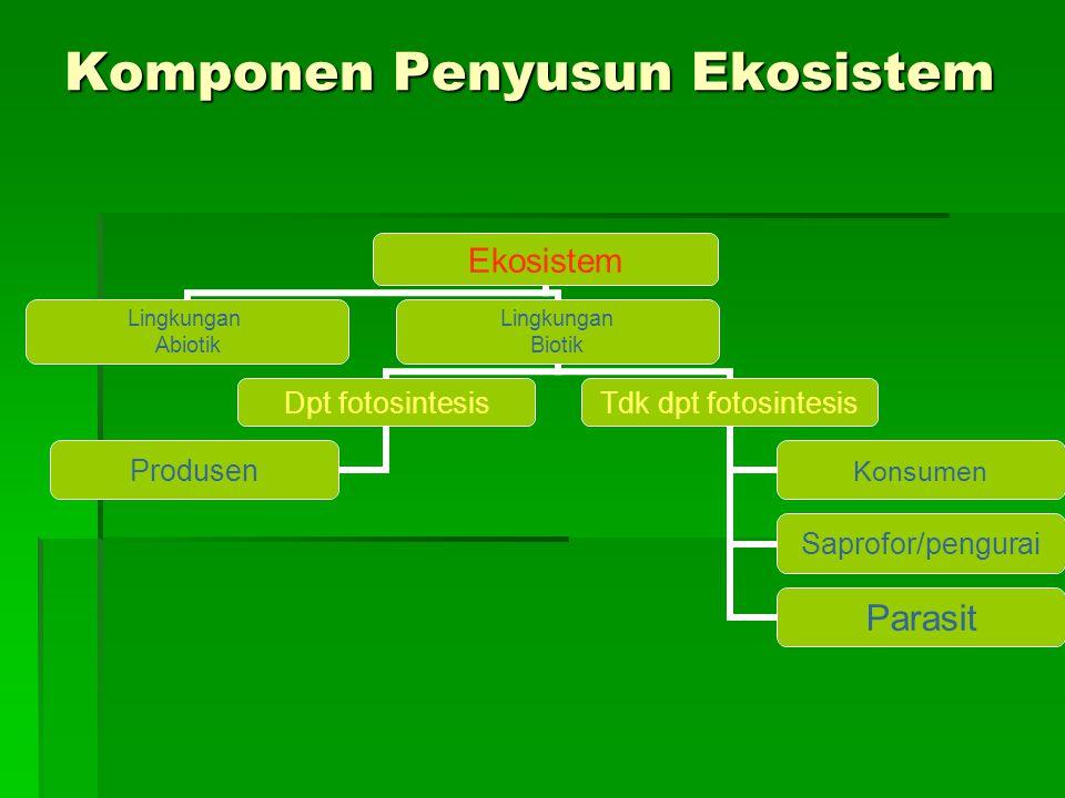 Komponen Penyusun Ekosistem Ekosistem Lingkungan Abiotik Lingkungan Biotik Dpt fotosintesis Produsen Tdk dpt fotosintesis Konsumen Saprofor/pengurai Parasit