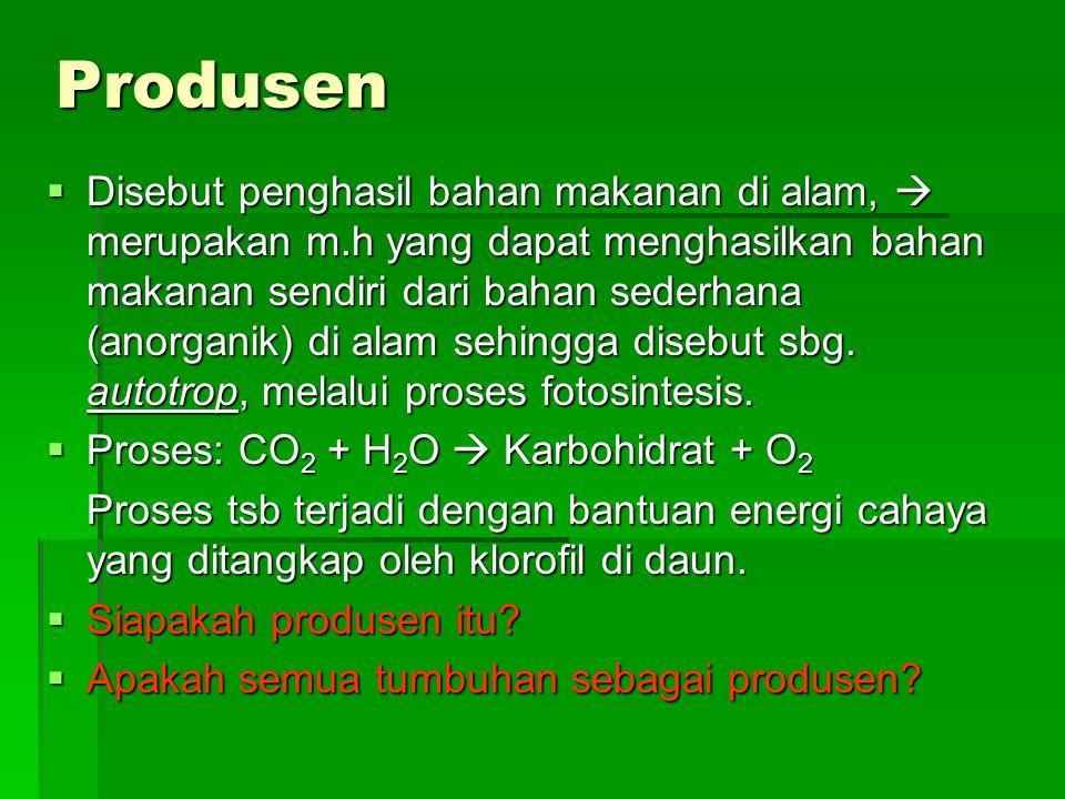Produsen  Disebut penghasil bahan makanan di alam,  merupakan m.h yang dapat menghasilkan bahan makanan sendiri dari bahan sederhana (anorganik) di alam sehingga disebut sbg.