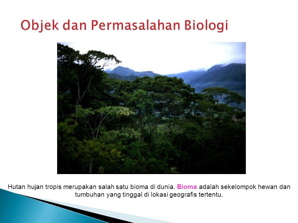 Hutan hujan tropis merupakan salah satu bioma di dunia. Bioma adalah sekelompok hewan dan tumbuhan yang tinggal di lokasi geografis tertentu.