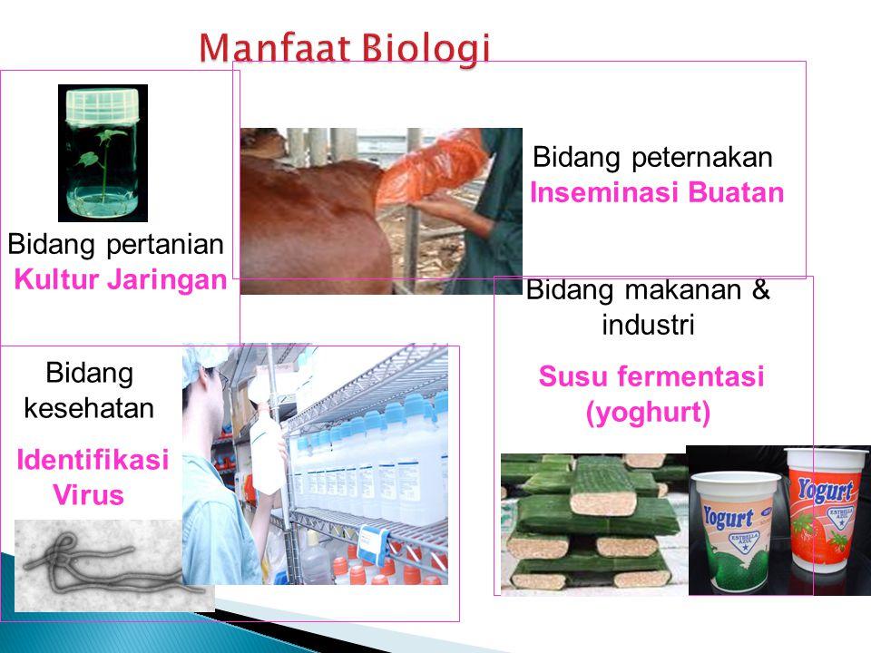 Bidang pertanian Kultur Jaringan Bidang peternakan Inseminasi Buatan Bidang kesehatan Identifikasi Virus Bidang makanan & industri Susu fermentasi (yoghurt)
