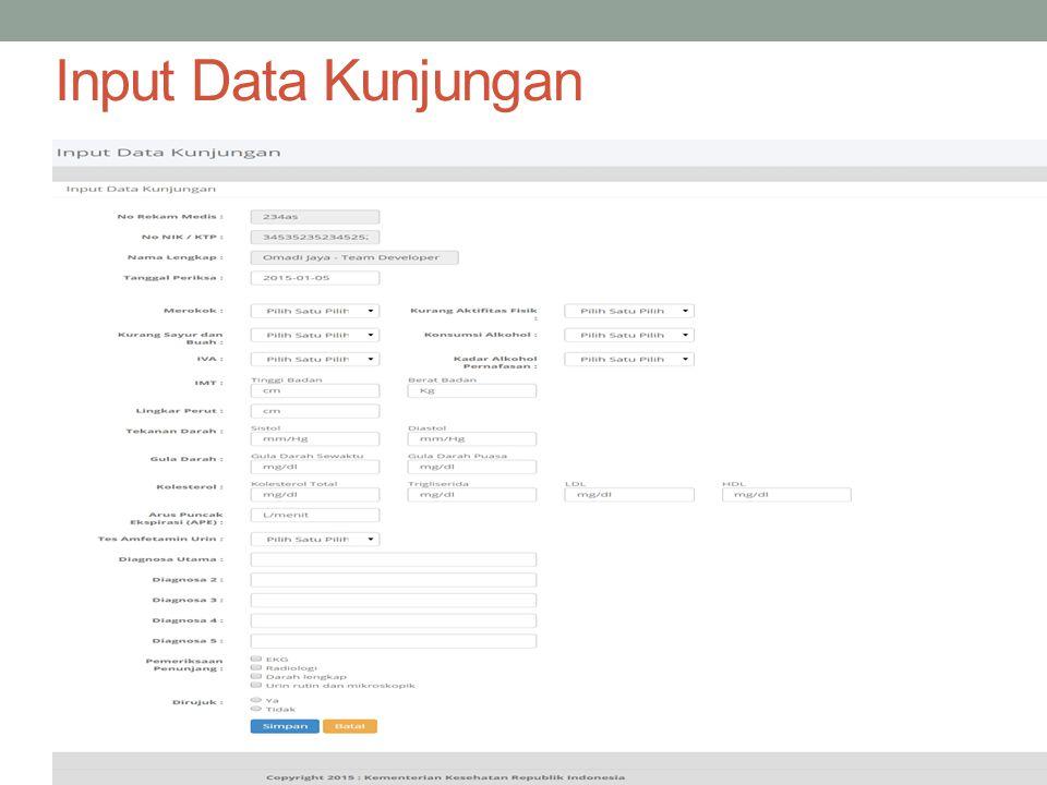 Input Data Kunjungan
