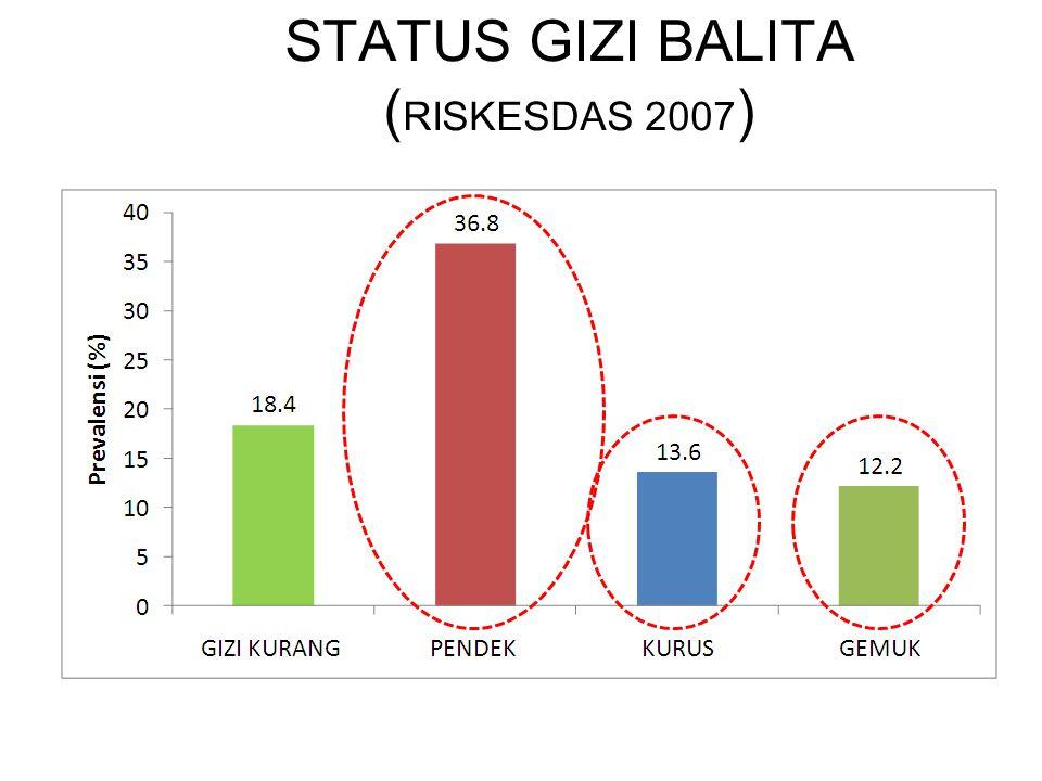 STATUS GIZI BALITA ( RISKESDAS 2007 ) 17