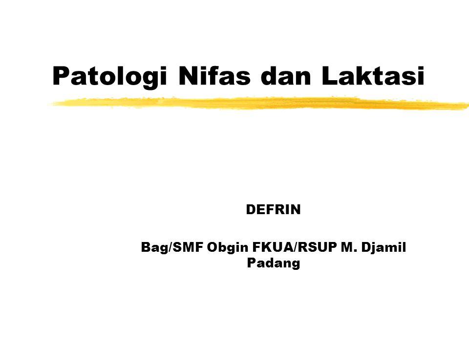 Patologi Nifas dan Laktasi DEFRIN Bag/SMF Obgin FKUA/RSUP M. Djamil Padang
