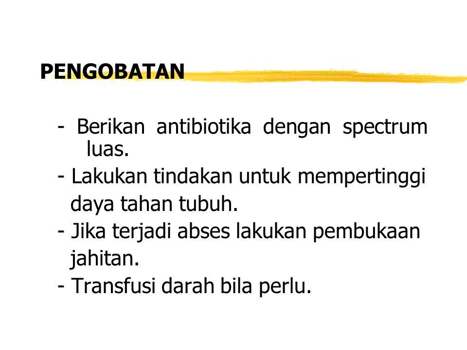 PENGOBATAN - Berikan antibiotika dengan spectrum luas.