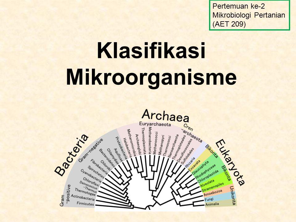 Klasifikasi Mikroorganisme Pertemuan ke-2 Mikrobiologi Pertanian (AET 209)