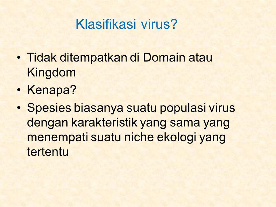 Klasifikasi virus.Tidak ditempatkan di Domain atau Kingdom Kenapa.