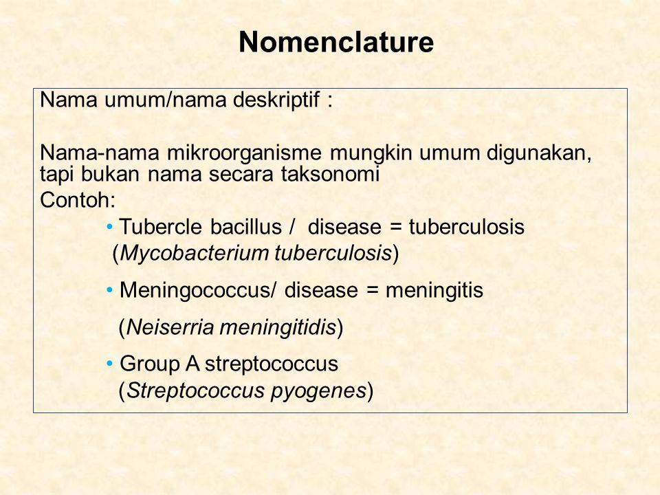 Nomenclature Nama umum/nama deskriptif : Nama-nama mikroorganisme mungkin umum digunakan, tapi bukan nama secara taksonomi Contoh: Tubercle bacillus / disease = tuberculosis (Mycobacterium tuberculosis) Meningococcus/ disease = meningitis (Neiserria meningitidis) Group A streptococcus (Streptococcus pyogenes)