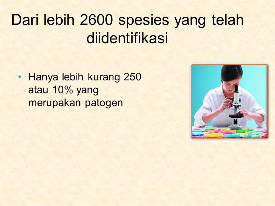 Dari lebih 2600 spesies yang telah diidentifikasi Hanya lebih kurang 250 atau 10% yang merupakan patogen