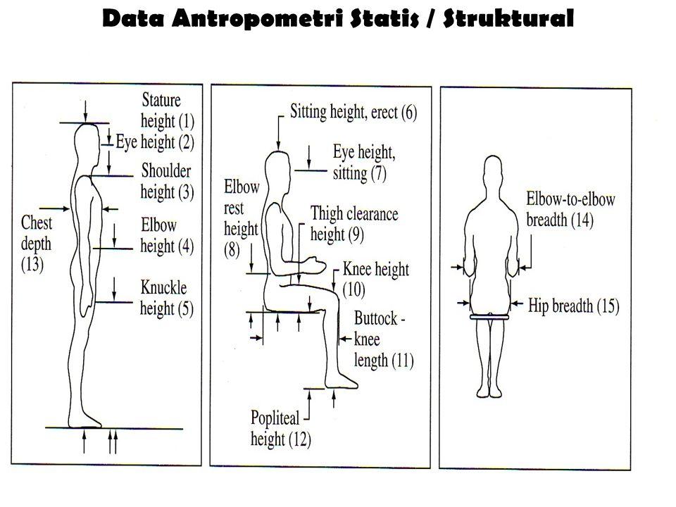Data Antropometri Statis / Struktural