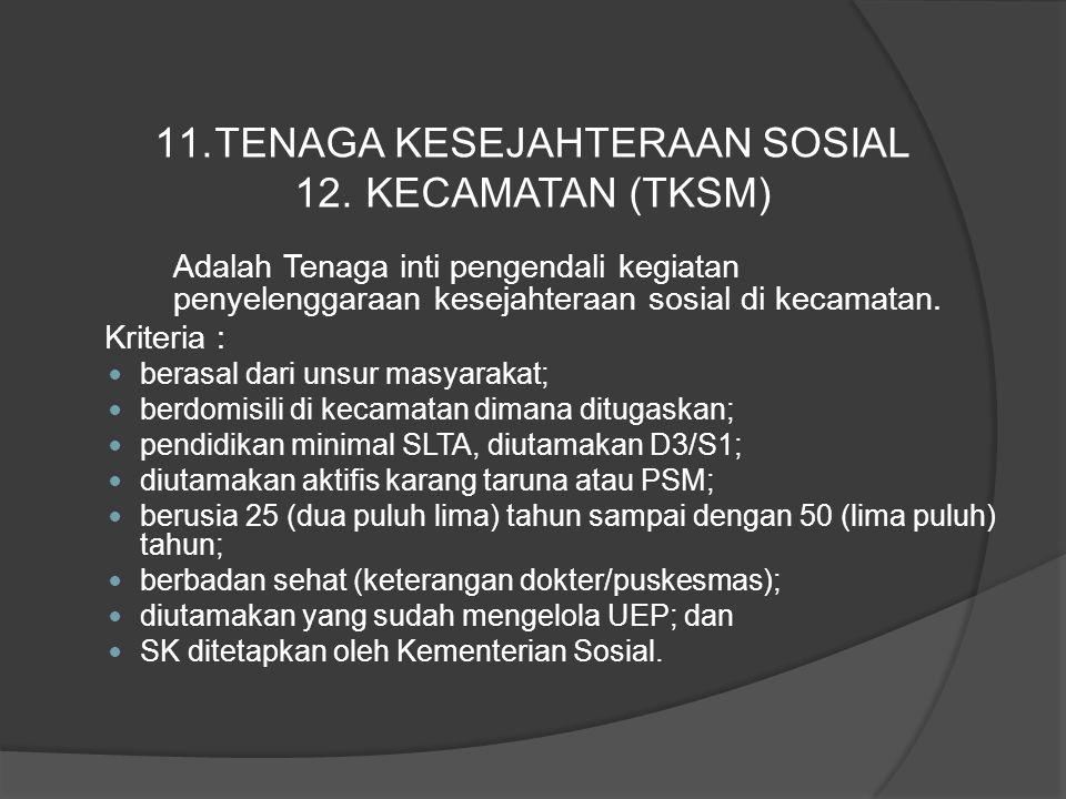 Adalah Tenaga inti pengendali kegiatan penyelenggaraan kesejahteraan sosial di kecamatan. Kriteria : berasal dari unsur masyarakat; berdomisili di kec