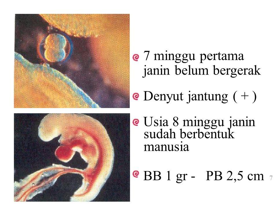 Akhir Trimester ke 3 (36 mg) penambahan ukuran meliputi subkutan dan massa otot shg janin dapat hidup diluar Aktivitas janin responsif terhadap emosi ibu 8