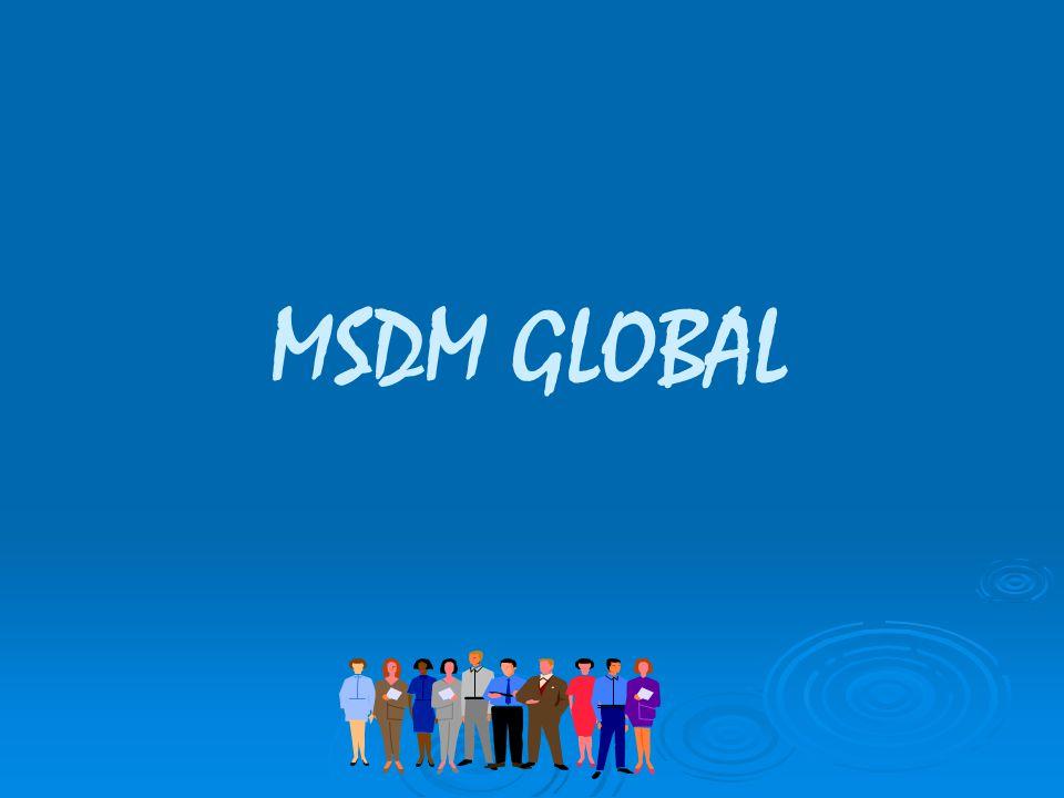 MSDM GLOBAL