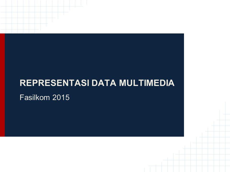 REPRESENTASI DATA MULTIMEDIA Fasilkom 2015