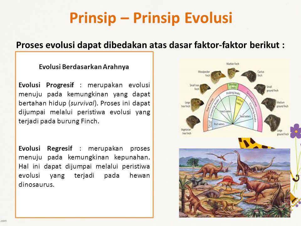 Prinsip – Prinsip Evolusi Proses evolusi dapat dibedakan atas dasar faktor-faktor berikut : Evolusi Berdasarkan Arahnya Evolusi Progresif : merupakan