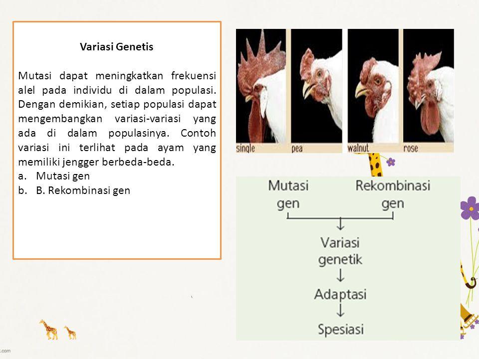Variasi Genetis Mutasi dapat meningkatkan frekuensi alel pada individu di dalam populasi. Dengan demikian, setiap populasi dapat mengembangkan variasi