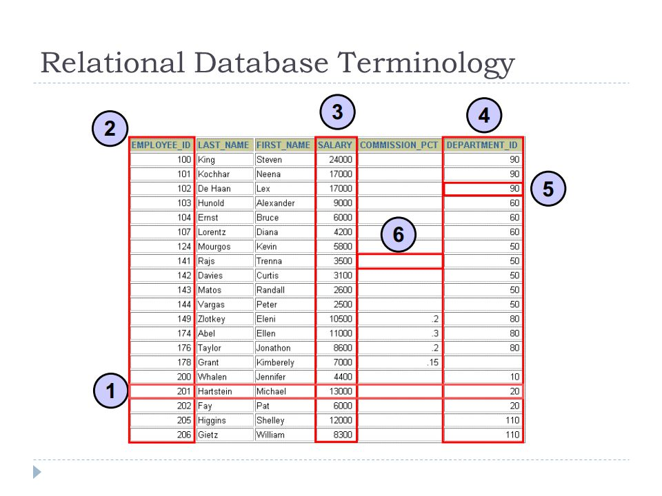 Next :  Pengumpulan Tugas  Restricting and Sorting Data