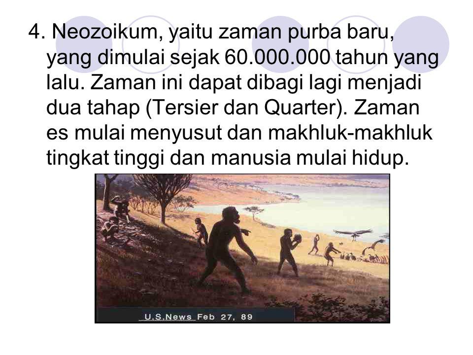 4. Neozoikum, yaitu zaman purba baru, yang dimulai sejak 60.000.000 tahun yang lalu. Zaman ini dapat dibagi lagi menjadi dua tahap (Tersier dan Quarte