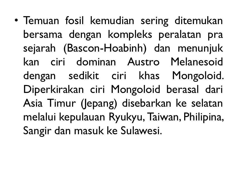 Temuan fosil kemudian sering ditemukan bersama dengan kompleks peralatan pra sejarah (Bascon-Hoabinh) dan menunjuk kan ciri dominan Austro Melanesoid