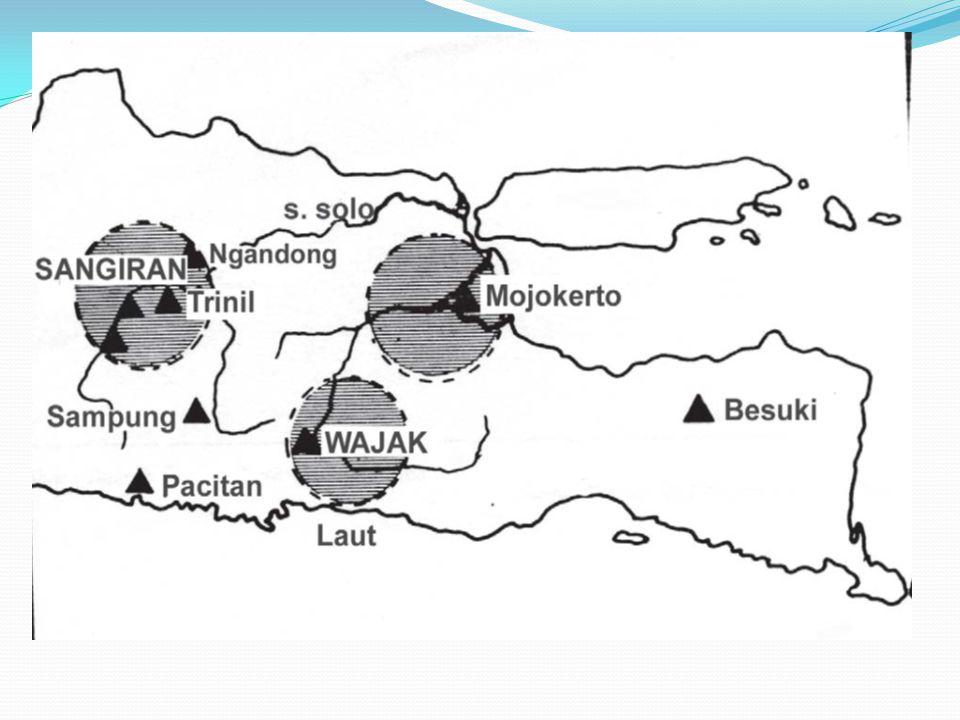 Tugas diskusi: Kelompok I dan II mendapat tugas membuat kajian tentang penelitian manusia purba di Sangiran Kelompok III dan IV melakukan kajian terhadapap penelitian manusia purba di Trinil Kelompok V dan VI melakukan kajian tentang hambatan dan kemudahan serta peranan peneliti Indonesia dalam melakukan penelitian di sangiran dan Trinil