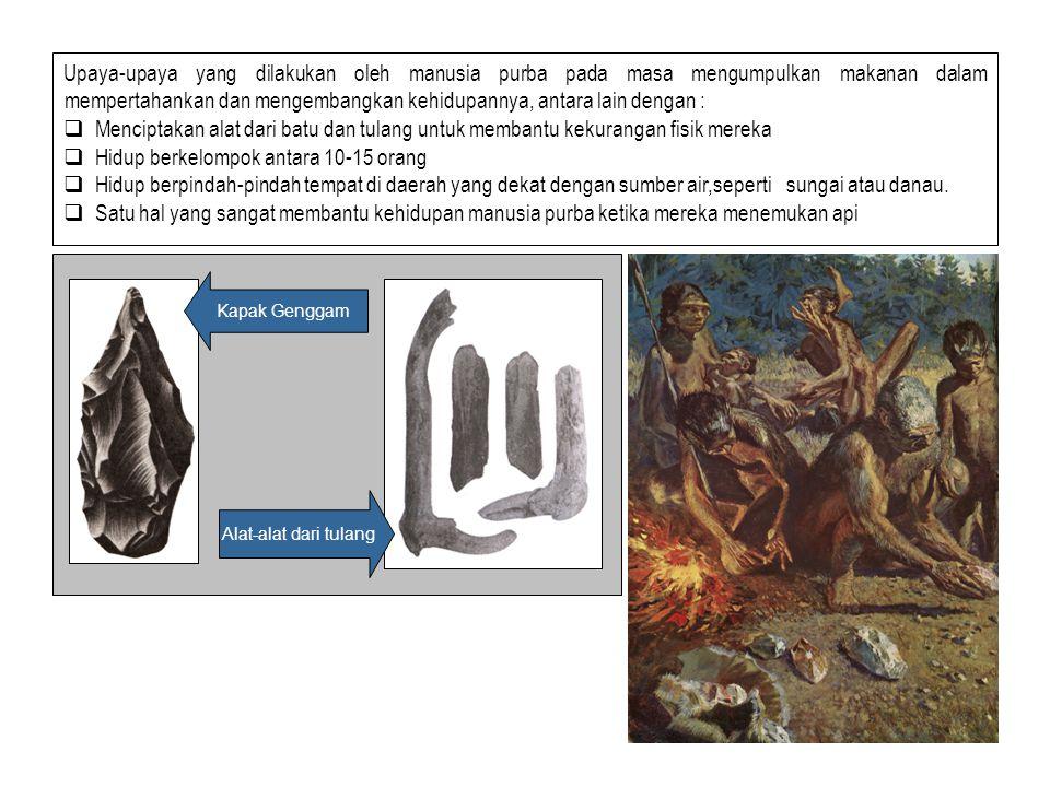 Dalam perkembangan sosial, ekonomi dan budaya masyarakat prasejarah melalui tahap- tahap kehidupannya, yaitu masa berburu dan mengumpulkan makanan, ma