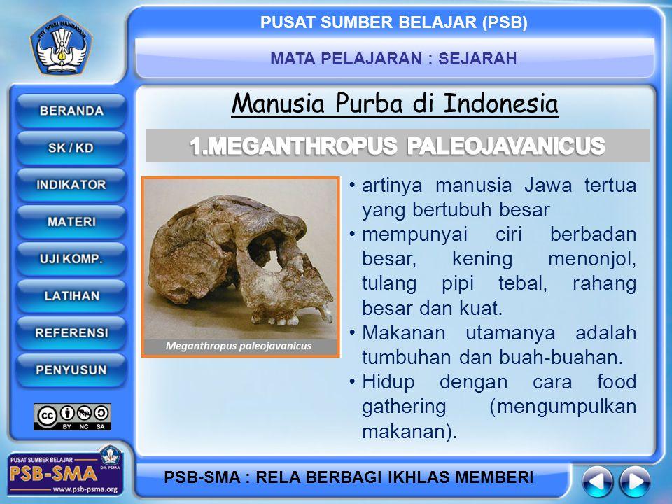 PUSAT SUMBER BELAJAR (PSB) MATA PELAJARAN : SEJARAH PSB-SMA : RELA BERBAGI IKHLAS MEMBERI Manusia Purba di Indonesia artinya manusia Jawa tertua yang