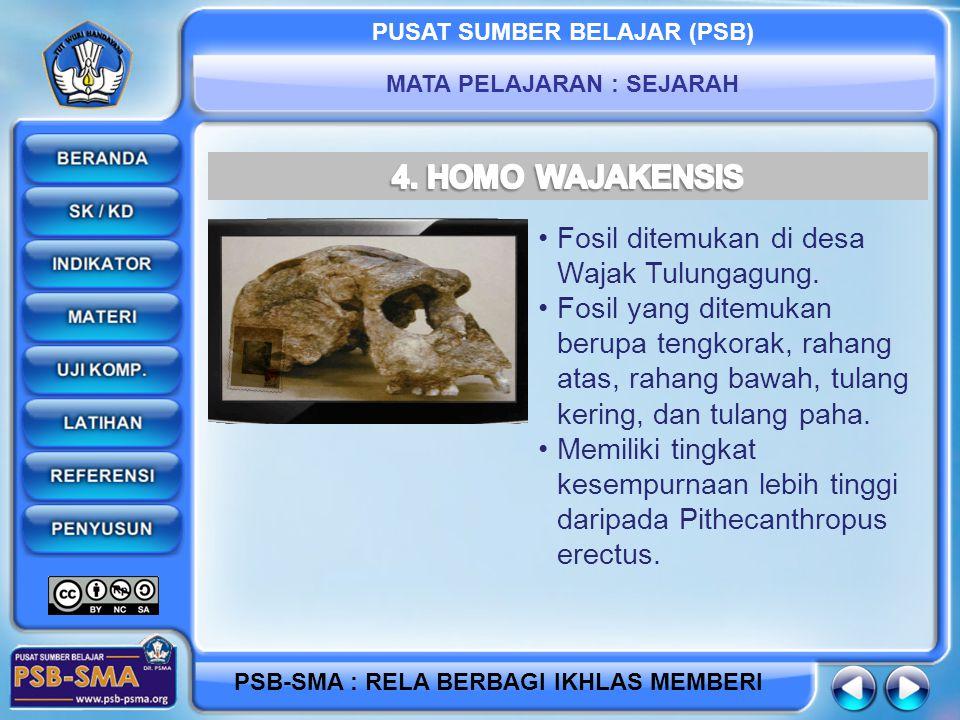 PUSAT SUMBER BELAJAR (PSB) MATA PELAJARAN : SEJARAH PSB-SMA : RELA BERBAGI IKHLAS MEMBERI Fosil ditemukan di desa Wajak Tulungagung. Fosil yang ditemu