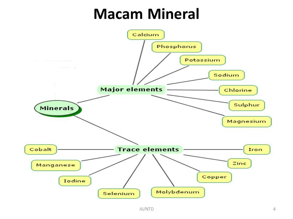 Macam Mineral AI/NTD4