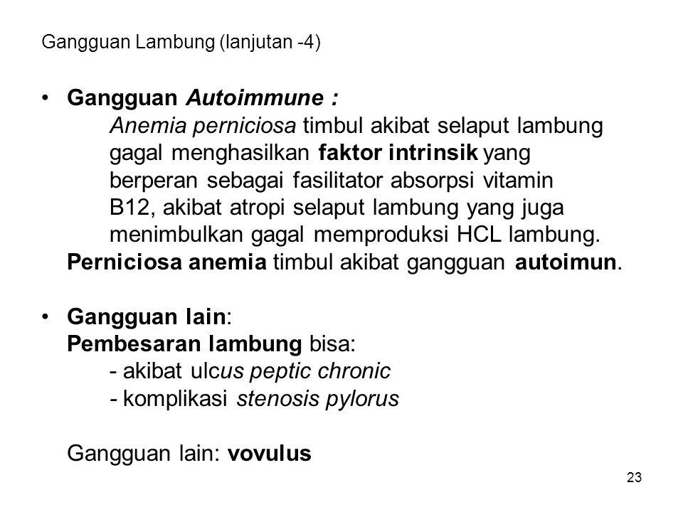23 Gangguan Lambung (lanjutan -4) Gangguan Autoimmune : Anemia perniciosa timbul akibat selaput lambung gagal menghasilkan faktor intrinsik yang berperan sebagai fasilitator absorpsi vitamin B12, akibat atropi selaput lambung yang juga menimbulkan gagal memproduksi HCL lambung.