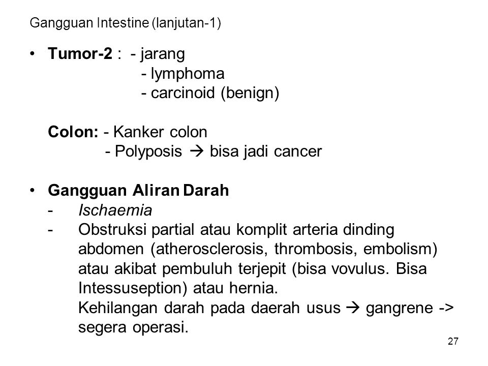 27 Gangguan Intestine (lanjutan-1) Tumor-2 : - jarang - lymphoma - carcinoid (benign) Colon: - Kanker colon - Polyposis  bisa jadi cancer Gangguan Aliran Darah -Ischaemia -Obstruksi partial atau komplit arteria dinding abdomen (atherosclerosis, thrombosis, embolism) atau akibat pembuluh terjepit (bisa vovulus.