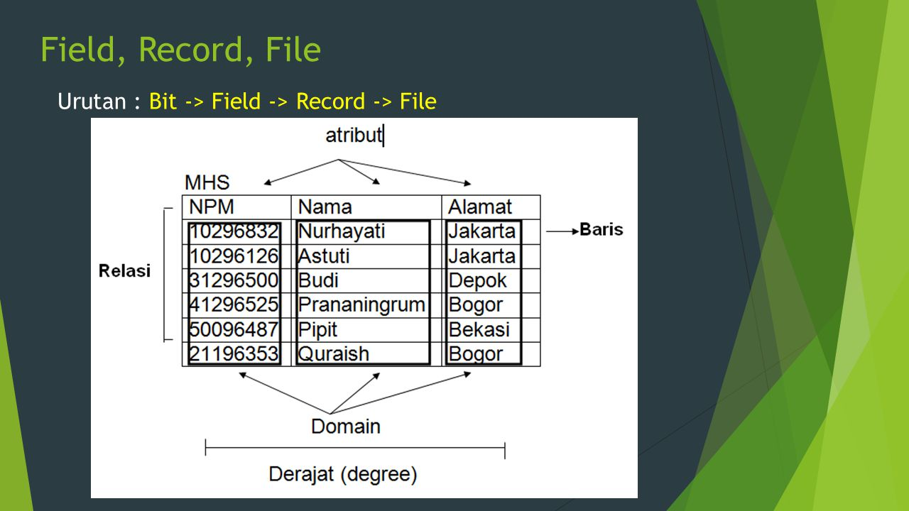 Field, Record, File Urutan : Bit -> Field -> Record -> File
