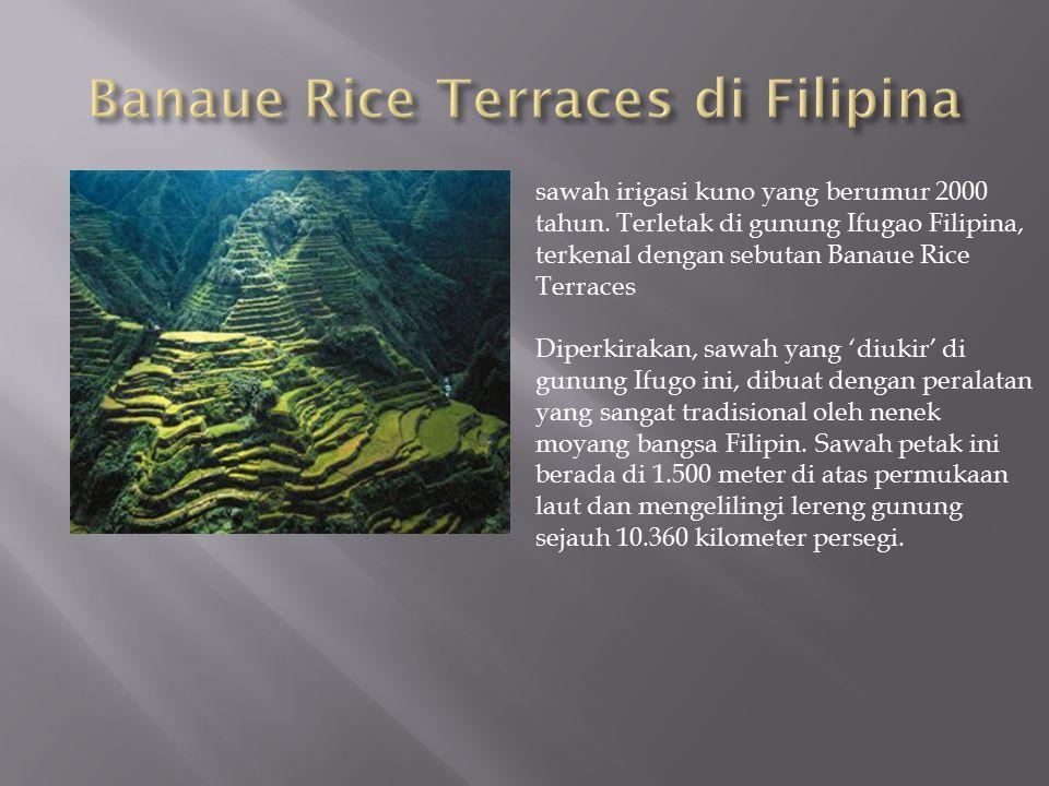 sawah irigasi kuno yang berumur 2000 tahun. Terletak di gunung Ifugao Filipina, terkenal dengan sebutan Banaue Rice Terraces Diperkirakan, sawah yang