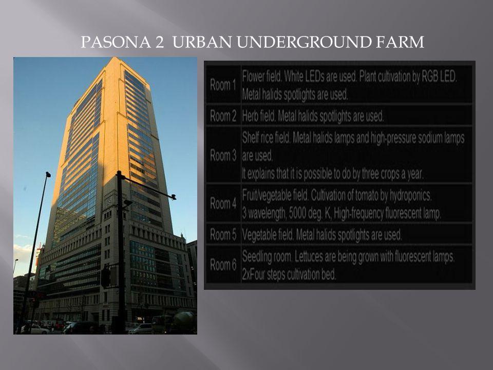PASONA 2 URBAN UNDERGROUND FARM