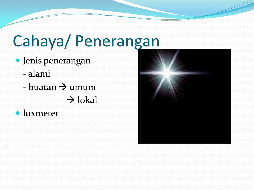 Cahaya/ Penerangan Jenis penerangan - alami - buatan  umum  lokal luxmeter