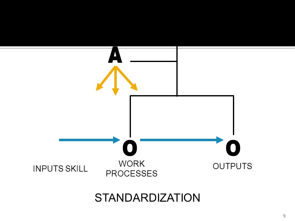 9 WORK PROCESSES OUTPUTS STANDARDIZATION INPUTS SKILL