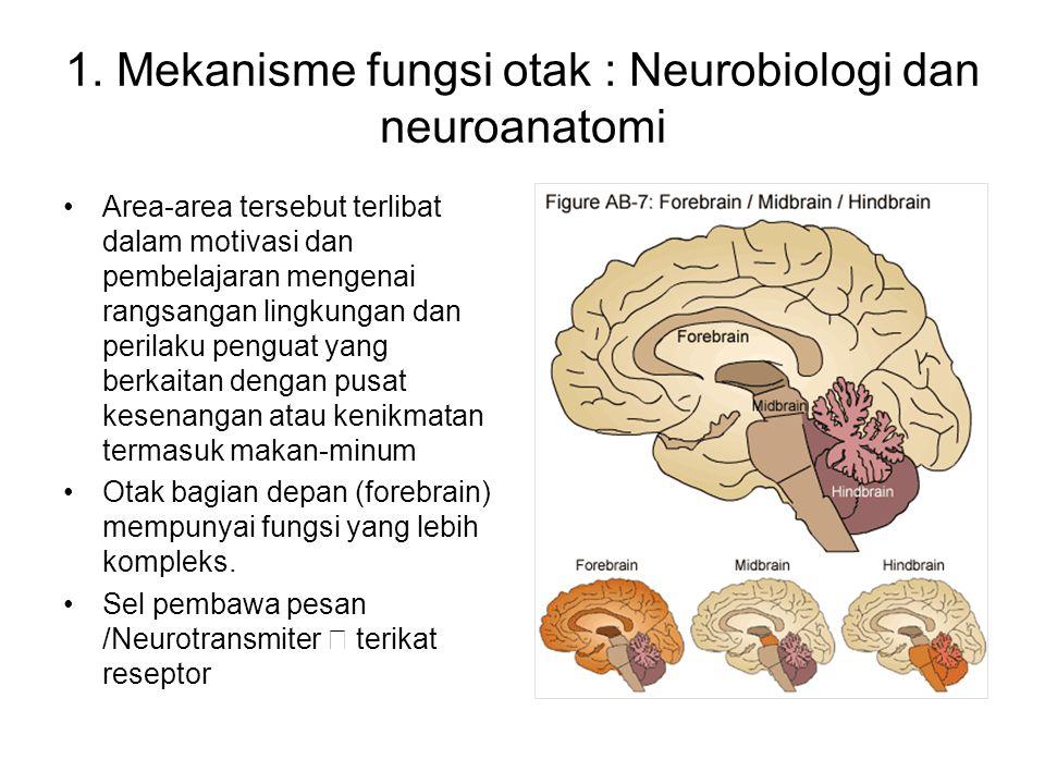 Zat psikosktif mampu meniru efek neurotransmiter alamiah /endogen, mempengaruhi fungsi otak normal: memblokir fungsi normal, mengubah penyimpanan, penglepasan dan pembuangan neurotransmitor.