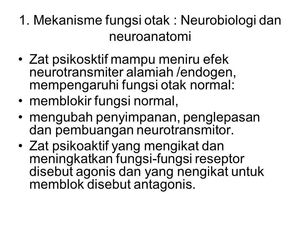 Zat psikosktif mampu meniru efek neurotransmiter alamiah /endogen, mempengaruhi fungsi otak normal: memblokir fungsi normal, mengubah penyimpanan, pen